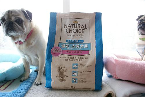 ニュートロ・ナチュラルチョイス 避妊・去勢犬用 超小型〜小型犬用 シニア犬用 チキン&玄米