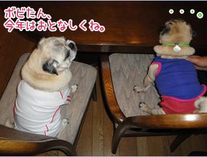 2012お誕生日会!