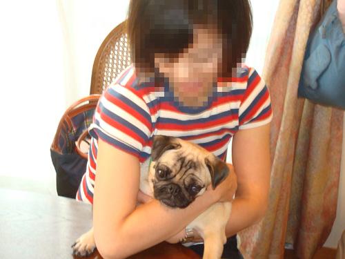 2009年8月の犬千代さんとボビたん