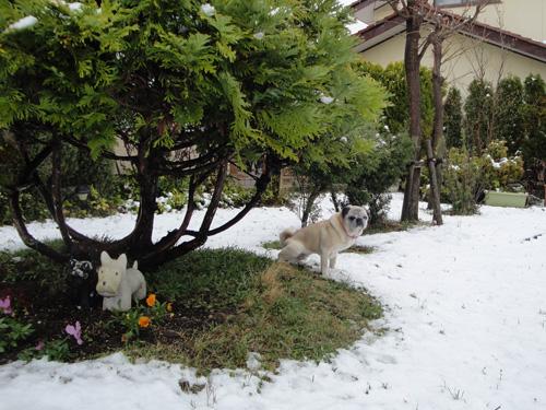 観測史上2番目に遅い積雪