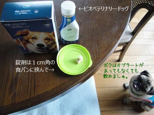 お薬の飲ませ方と犬用オブラート