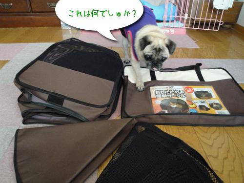 楽天ゴールデンイーグルス日本一記念セールでお買い物