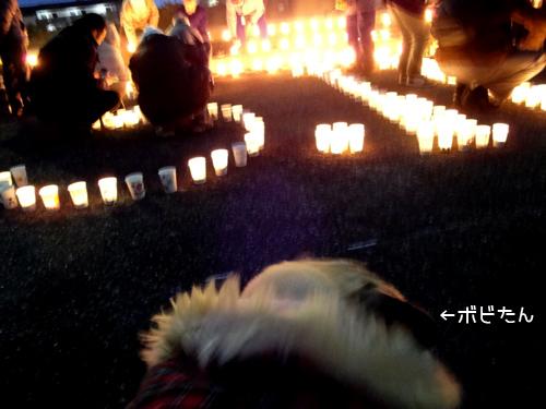 3.11 多賀城・万灯会